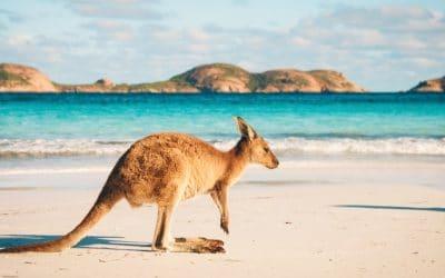 Organiser un voyage sur mesure pour partir en Australie